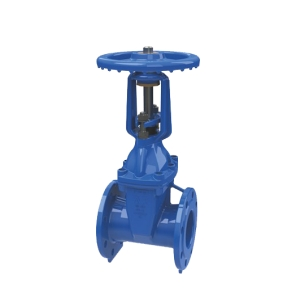 series 21-64 os&y gate valve