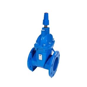 series 21-50 nrs gate valve